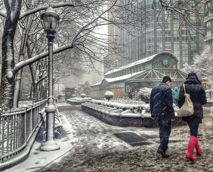 men and women walking on pavement photo