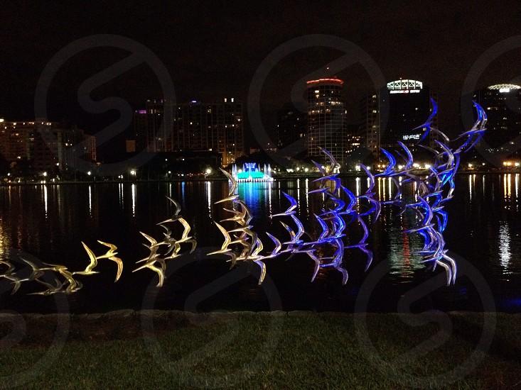 Lake Eola Orlando FL photo