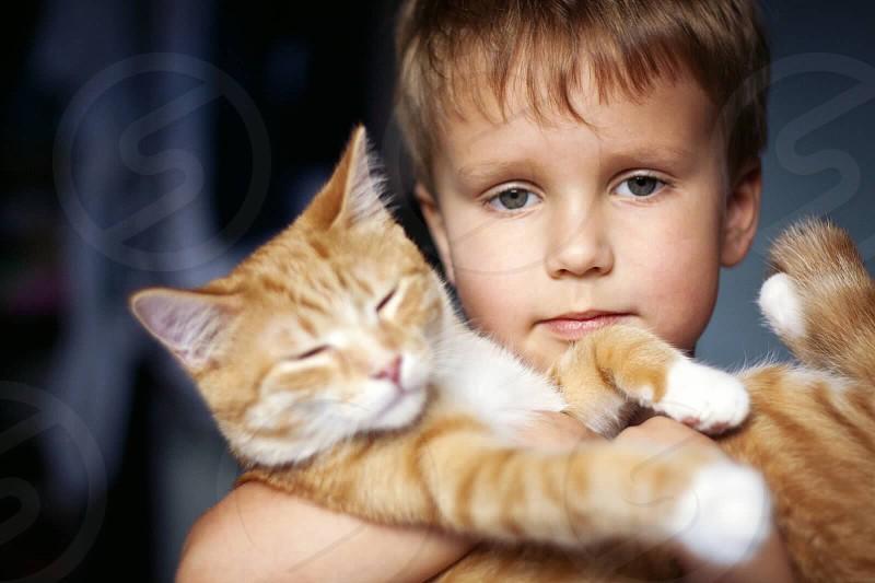 Boy cat hugs love per  photo