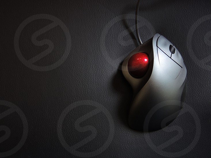 gray corded computer mouse with red track ball photo