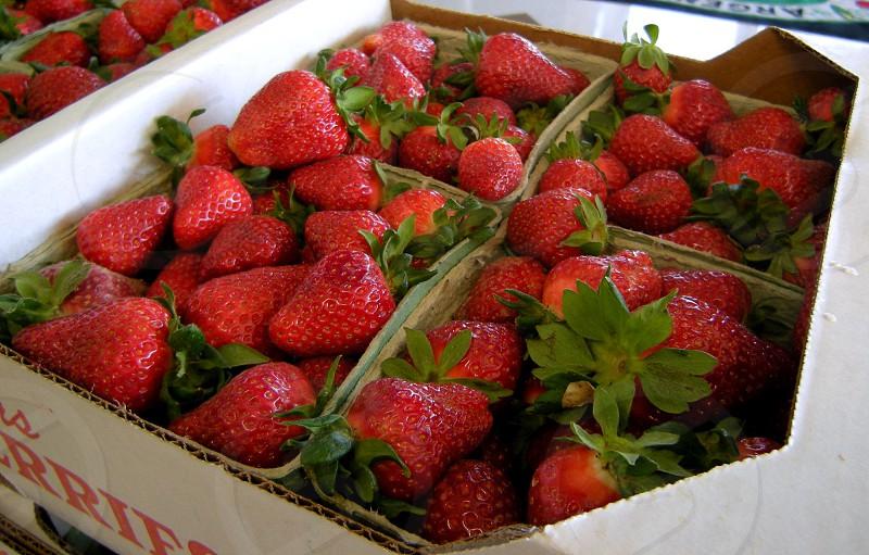 Farmers market strawberries photo