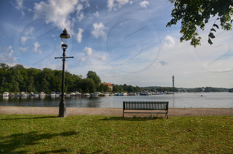 bench park lake photo photo