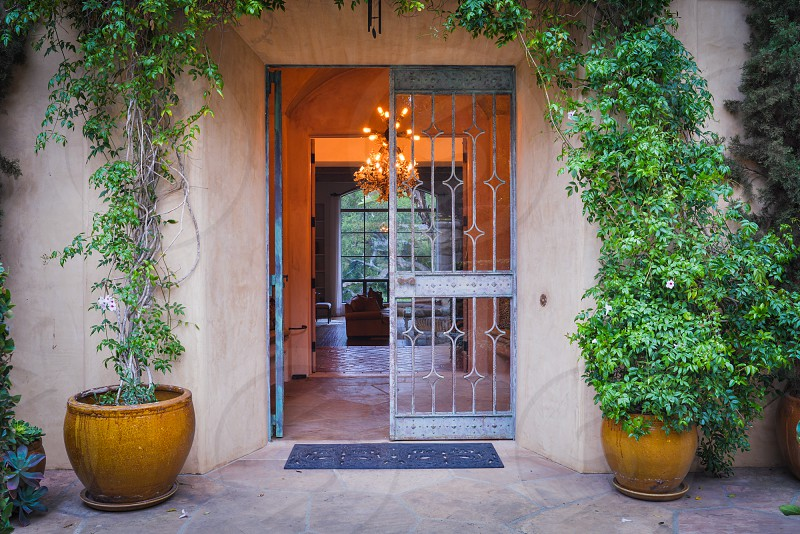home trees bushes houseplant front entrance facade photo