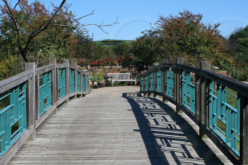 Fairytale nature bridge wood trees flowers photo