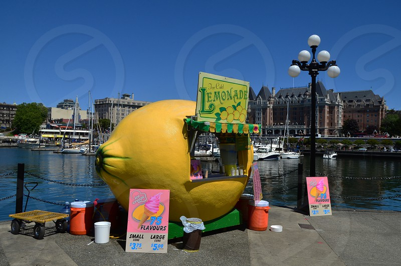 "Small Business-""Lemonade Ice Cream Shop"" photo"