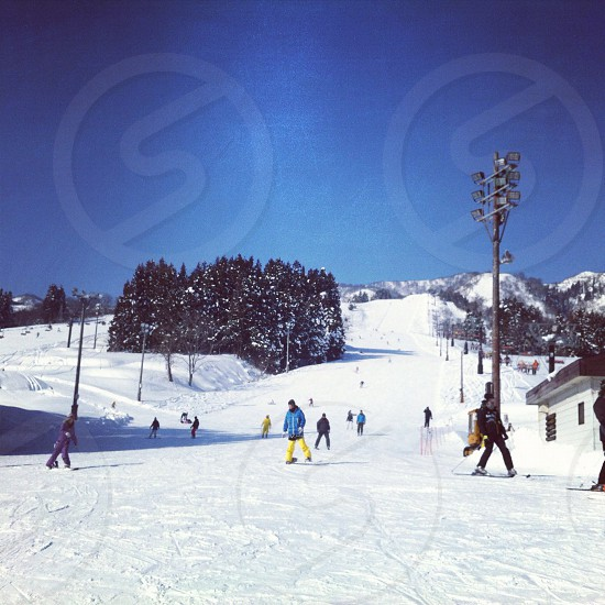 people skiing and snowboarding on slopes photo