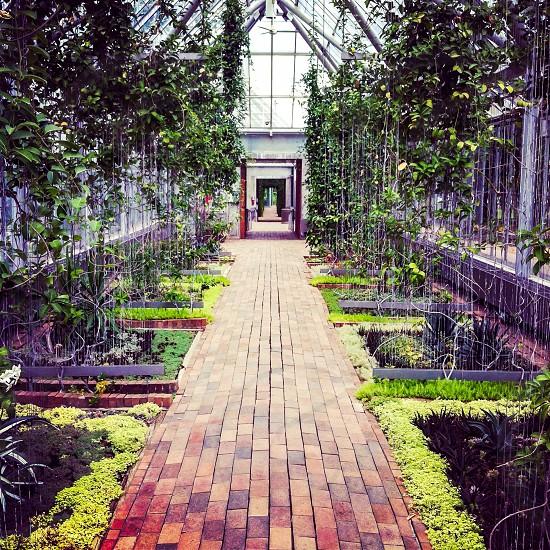 Garden of MN photo