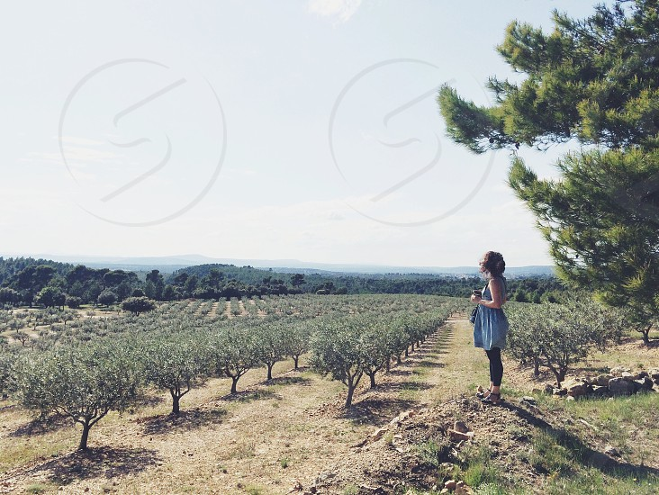 woman in blue chambray tank dress in winery fields photo