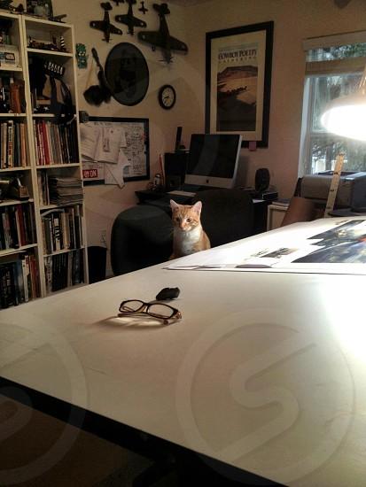 working in the studio photo