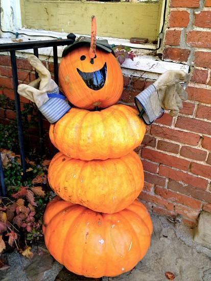 Happy Pumpkin photo