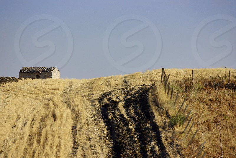 rustic house meadows - Sicily photo