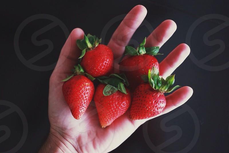 strawberry fruits photo