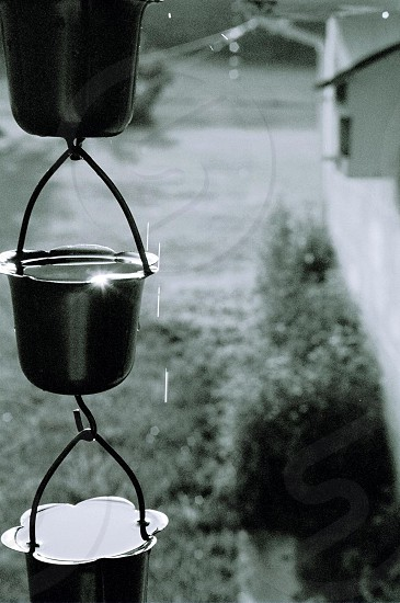 grayscale photo of metal hanging holders near grass plant photo