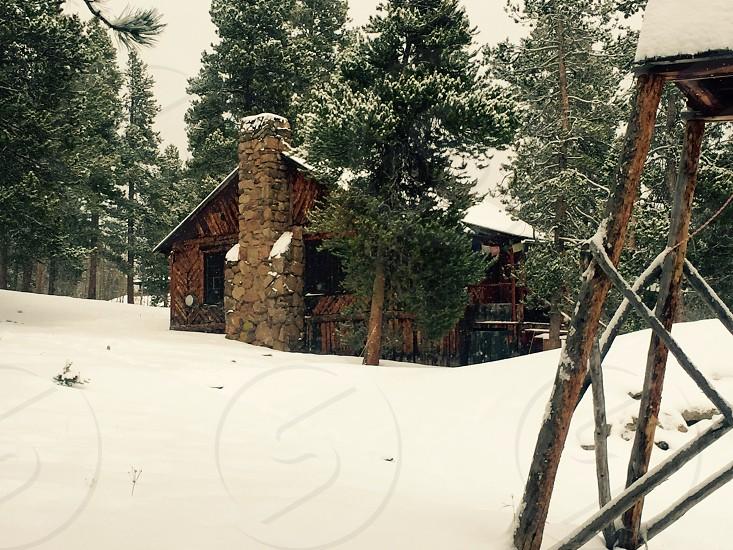 Cabin woods Colorado snow mountain photo