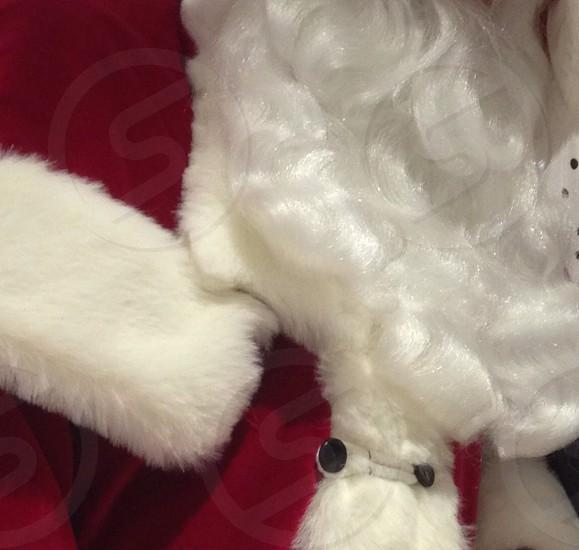 Soft coat Fur beard photo