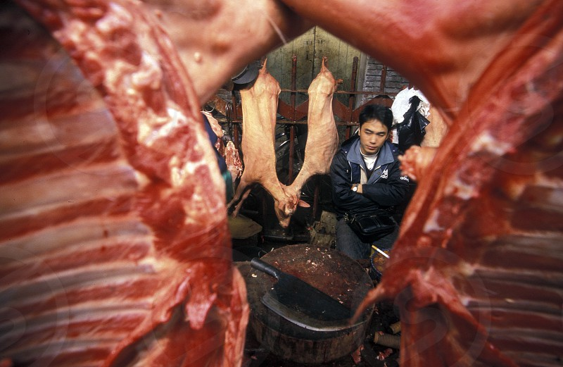 the meat Market in the city of Canton or Guangzhou in the north of Hongkong in the province of Guangdong in china in east asia.  photo