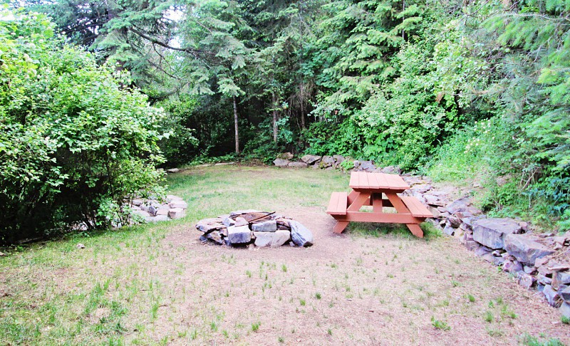 Picnic site in the forest  photo