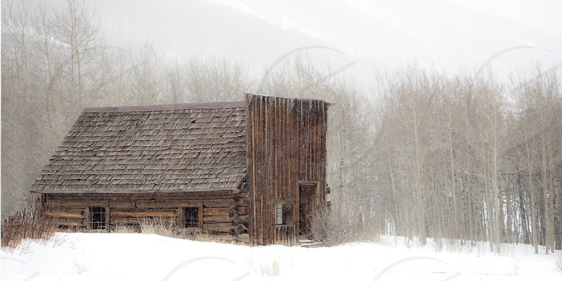 winter log cabin winter mountain cabin snow trees  photo