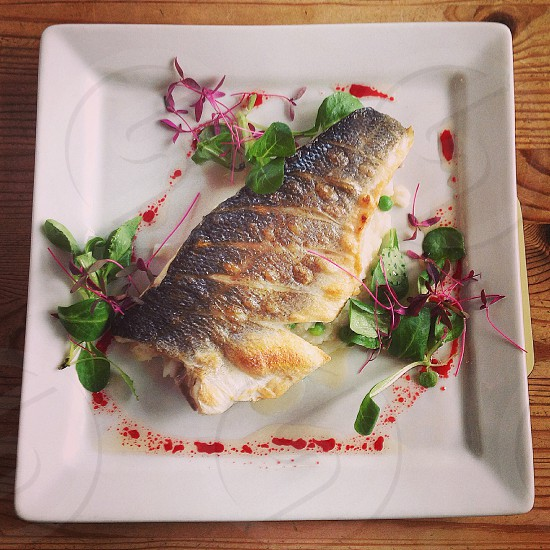 brown and grey fish on plate photo