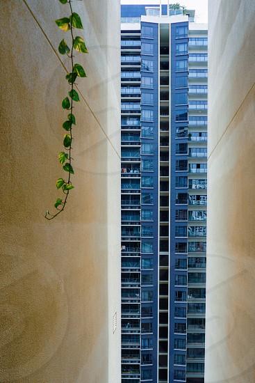 narrow building view photo
