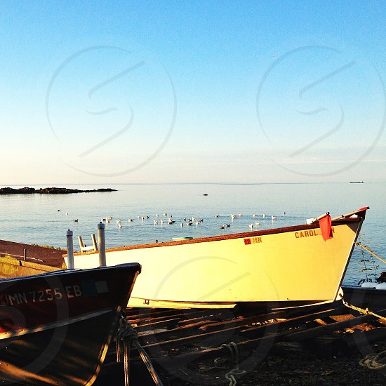white and red boat parked on sea shore photo