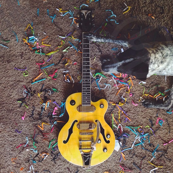 yellow and black electric guitar photo