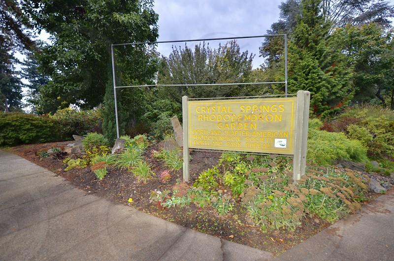 Crystal Springs Rhododendron Garden Portland Oregon photo