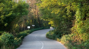 car passing on curved road on mountain slope with green trees top