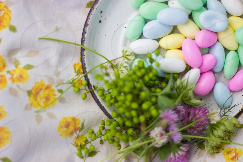 Colorful mints in natural light photo