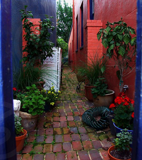Colorful brick alleyway in Annapolis MD photo