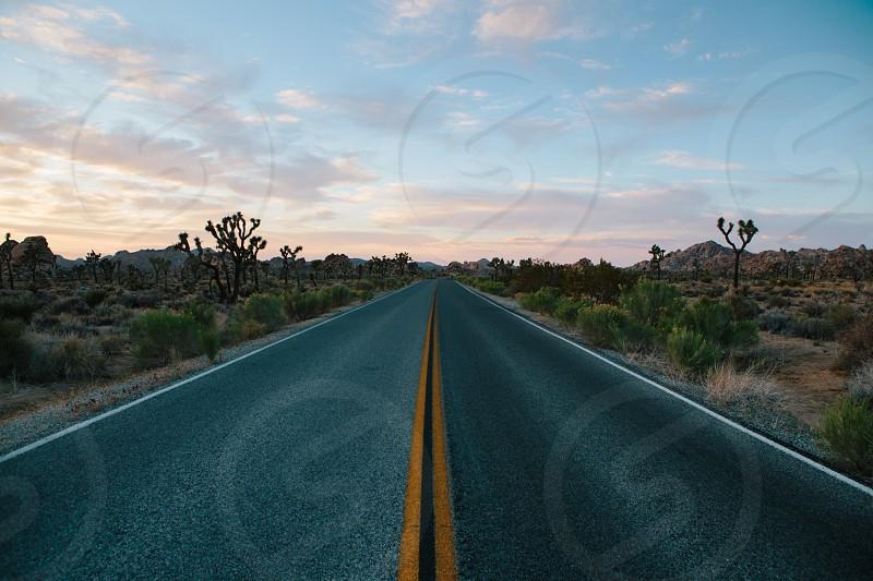 concrete road in desert photo