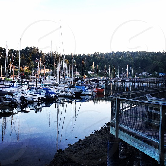 Sailboats in the Pacific Northwest photo