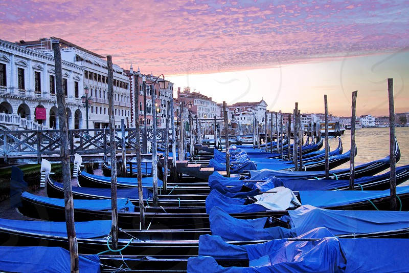 Pink dawn over Venice's blue tarp covered gondolas all moored before the begin of the day  photo