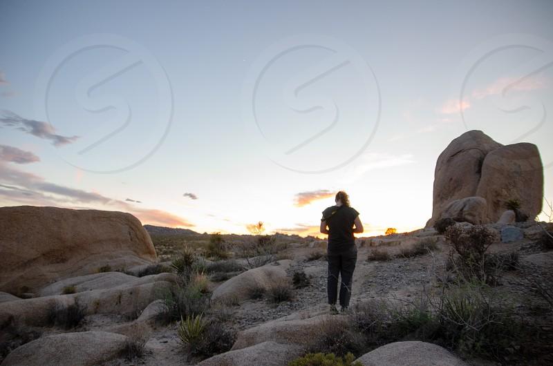 Desert California Joshua Tree sunset photo