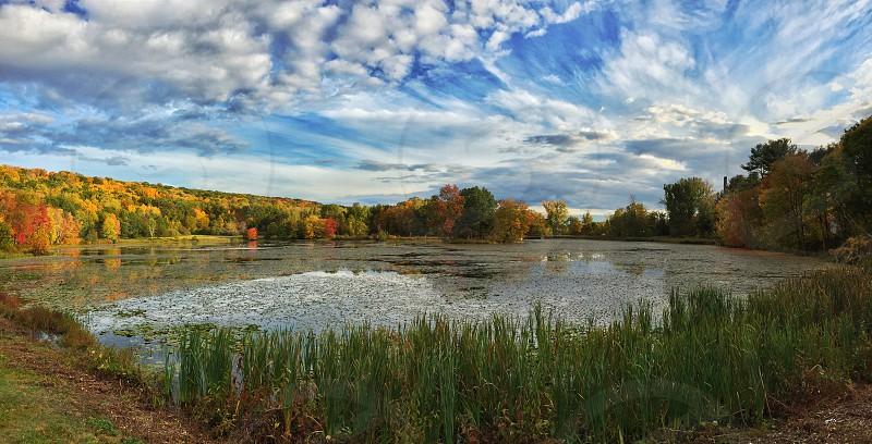 Nature fall lake  photo