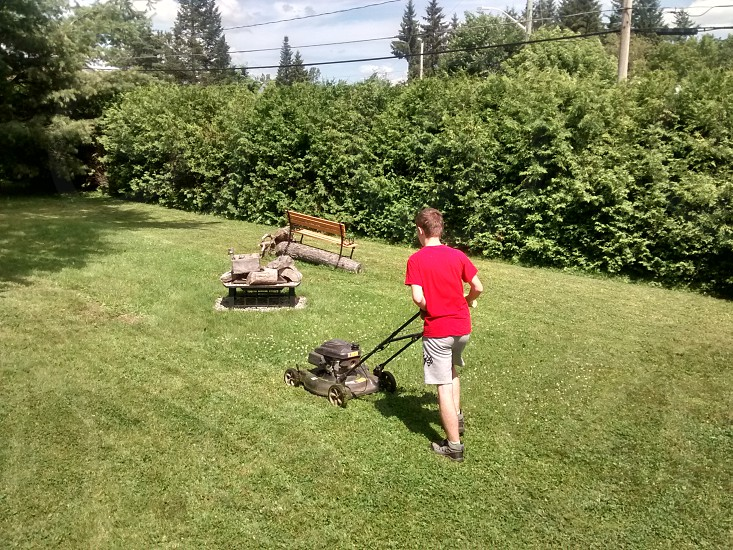 Young boy mowing the grass photo