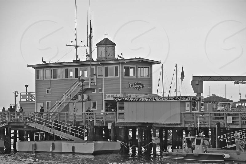 Avalon pier Catalina photo