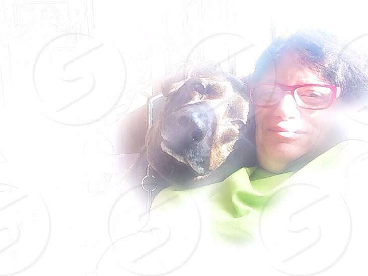 Selfiewomanlabdoggreenglasses photo