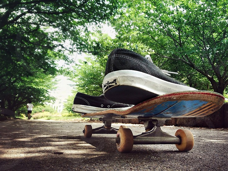 jack purcell sneakers on a skateboard photo