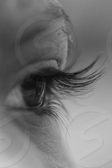 Close up focus on eyelashes eyes close up long eyelashes body parts black and white grey photo