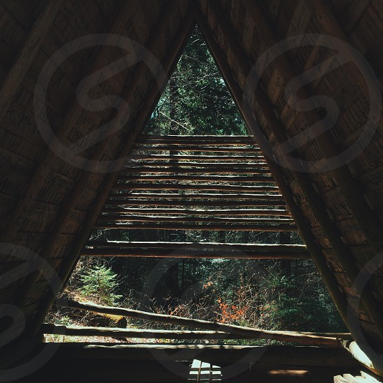Triangular nature wood roof forest beautiful shine summer spring geometry architecture adventure tale story fairy tale wonderful  photo