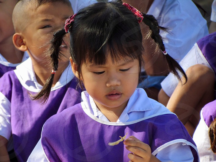 child kid childhood school student thailand Cambodian girl baby attention flower cute children kids photo