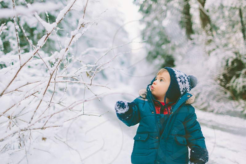 A little boy amazed by the snow in a forest.  photo