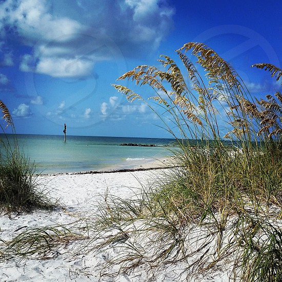 From a bench on Honeymoon Island FL photo