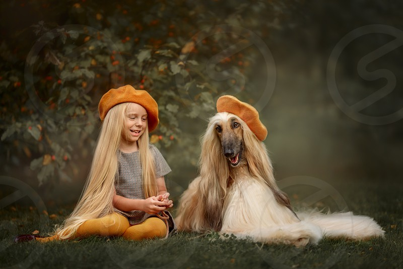 Blonde long-haired Girl with Afghan hound dog outdoor portrait  photo