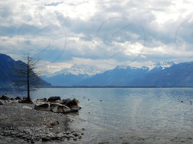 Montreux Geneva Lake photo