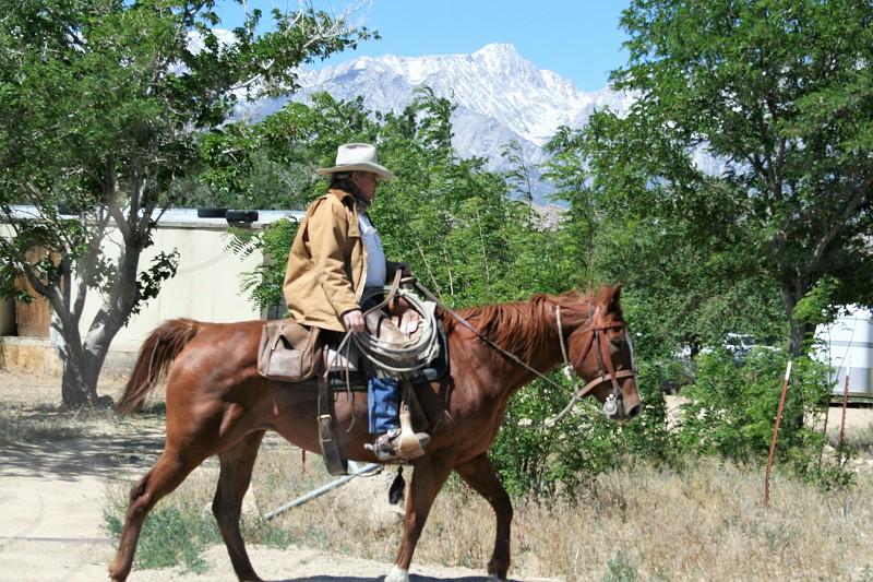 Cowboy riding along a road in rural California. photo