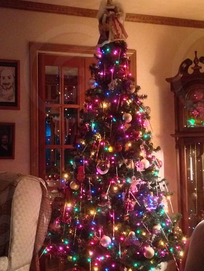 Christmas at home.   photo