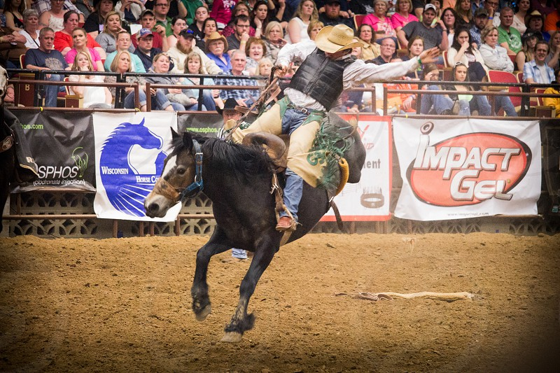 PRCA rodeo  cowboy bronc riding  photo