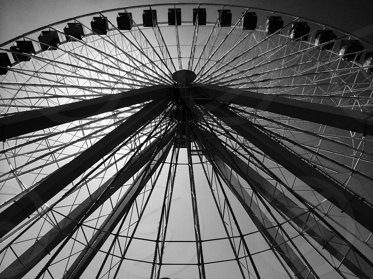 grey ferries wheel photo